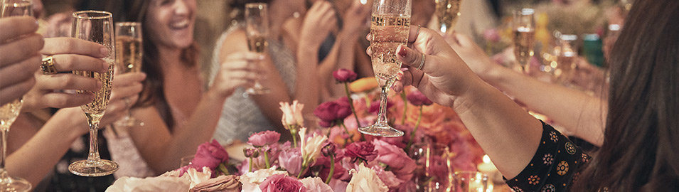 Wedding Guests raise their glasses of champagne.